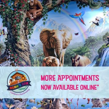 Noah's Ark appointments
